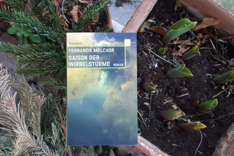 Saison der Wirbelstürme von Fernanda Melchor Buchcover